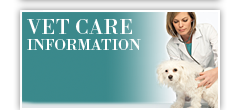 Vet care information
